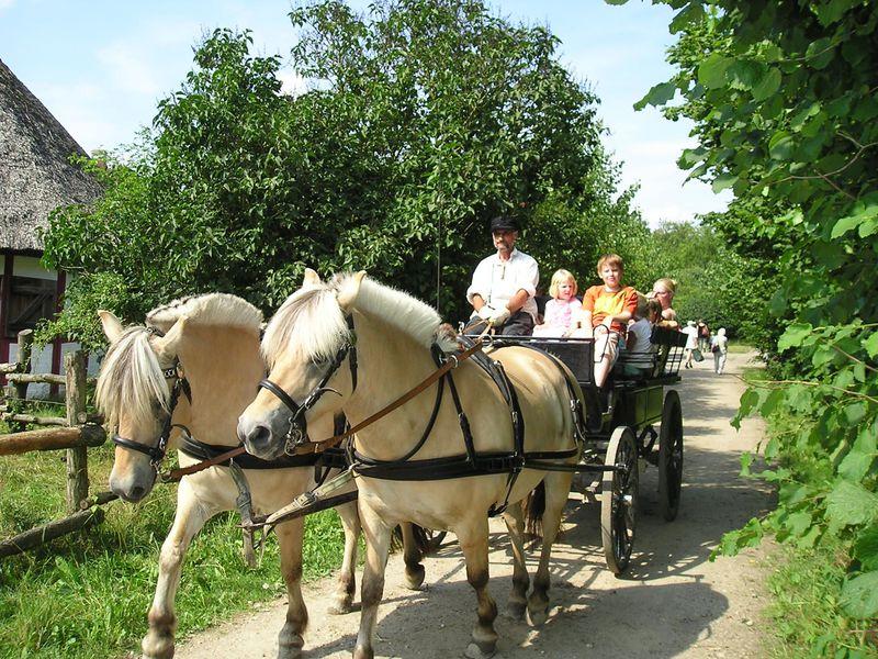 デンマーク・オーデンセ郊外の「フュン野外博物館」で垣間見る農村生活