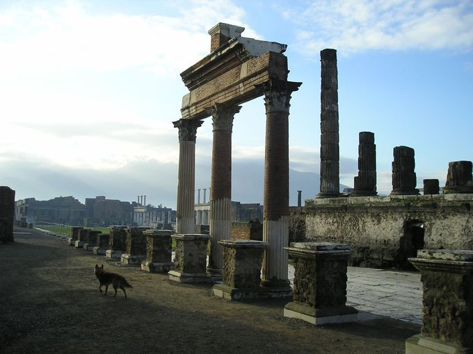 フォロは町の政治経済の中心地