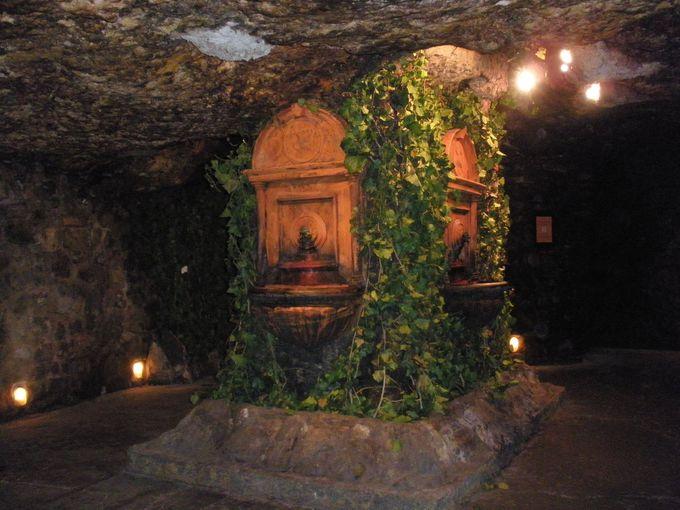 縦横無尽に走る地下洞窟で味わう探検気分
