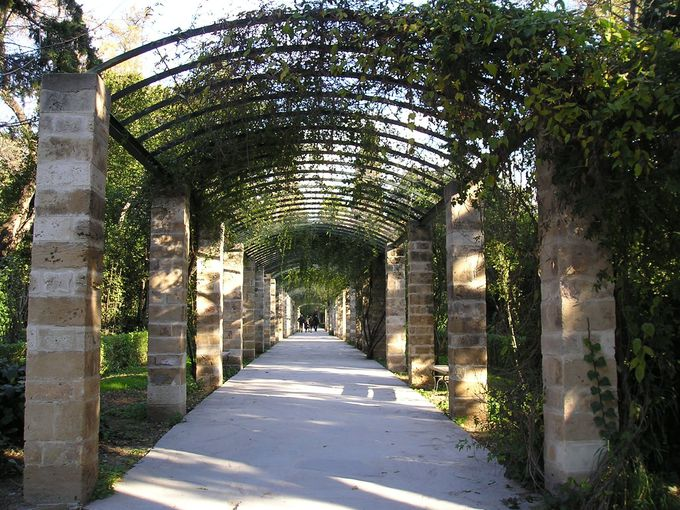 静寂に包まれた国立庭園とザピオン国際展示場