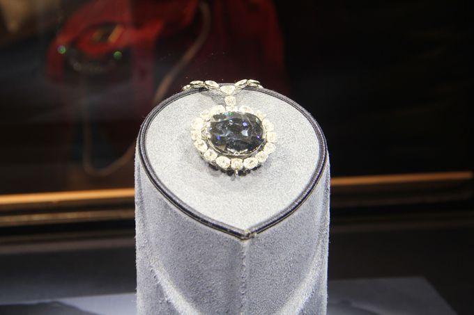 巨大ダイヤモンドに大興奮!大人も子どもも楽しめるアメリカ自然史博物館