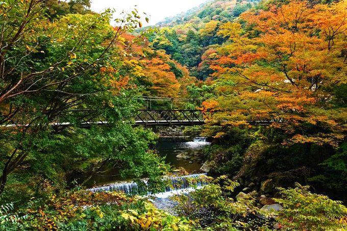 渓流サウンドと絶景