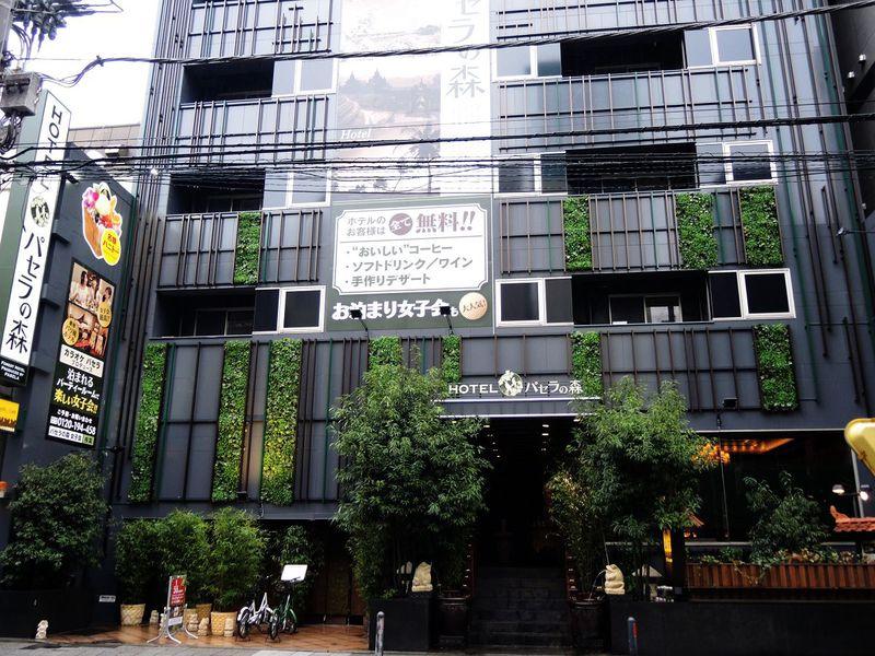 ワインやデザートまで無料!?「ホテルパセラの森 横浜関内」はお得度満点の新コンセプトホテル