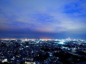 注目を集める新横浜で進化を続ける「新横浜プリンスホテル」は楽しみ満載の絶景ホテル|神奈川県|トラベルjp<たびねす>