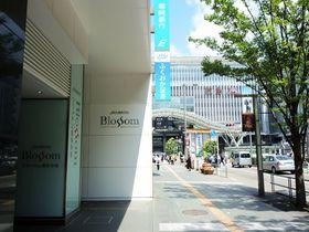 博多駅正面の好立地「JR九州ホテルブラッサム博多中央」は注目のハイクラスビジネスホテル|福岡県|トラベルjp<たびねす>