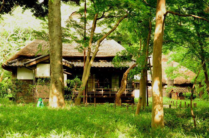 蘆花恒春園でかやぶき屋根の家に入ってみよう!