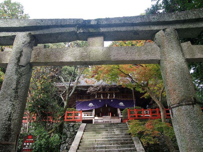 高鴨神社は古代豪族「鴨」一族発祥の地