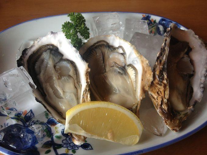 世界的ブランド牡蠣「的矢かき」は生でもあたらない!