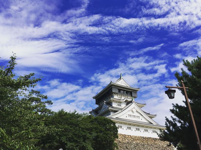 全国でここだけ! 斬新なデザインの小倉城