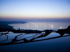 海と水田の絶妙コラボ!長門市油谷に点在する個性あふれる棚田たち
