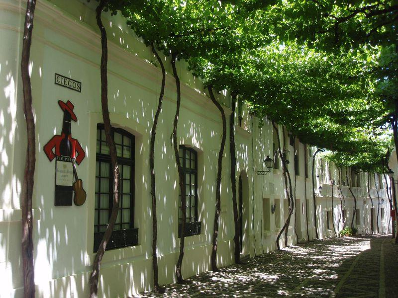 醸造所見学が楽しいシェリーの故郷スペイン「ヘレス・デ・ラ・フロンテイラ」