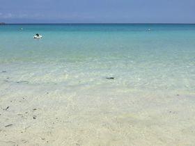 夏以外にも訪れたい、芸能人にも愛される「種子島」|鹿児島県|トラベルjp<たびねす>