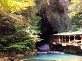 冒険気分も味わえる!日本最大規模鍾乳洞・山口県「秋芳洞」|山口県|トラベルjp<たびねす>