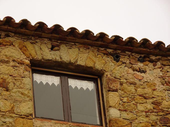 「マラリア」対策に住民が建物に刻んだ願い!
