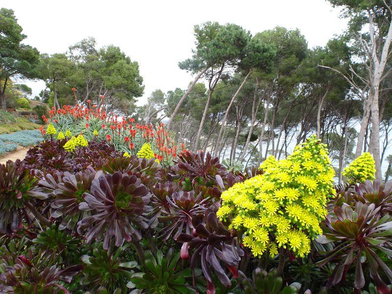 スペイン・コスタブラバ地方「カプ ロイグ植物公園」で絶景と自然に酔いしれる!