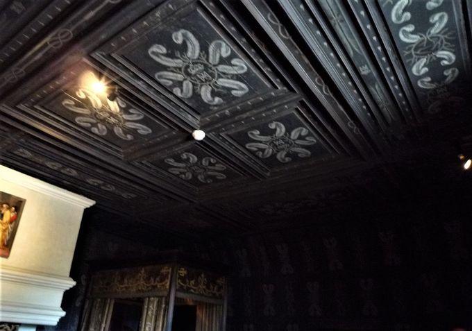 世にも珍しい「真っ暗な部屋」