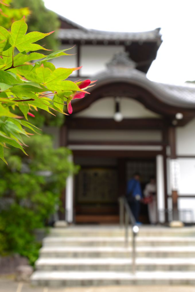 紆余曲折!歴史ある門跡寺院