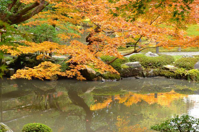 亀山天皇の愛した庭園