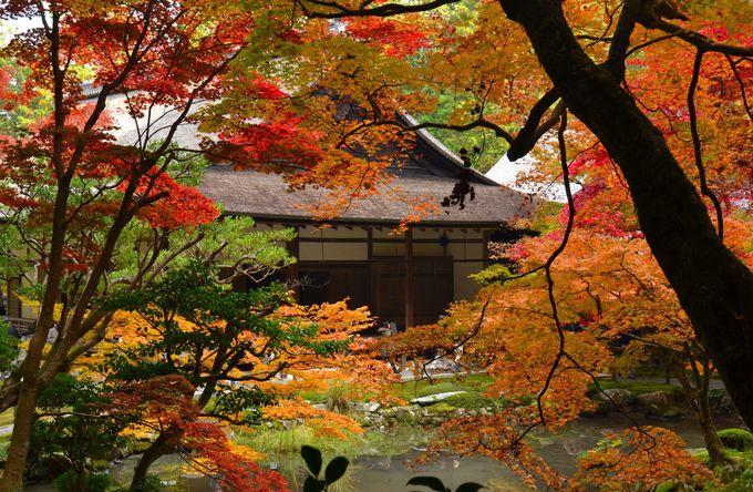 南禅寺発祥の地に、再び