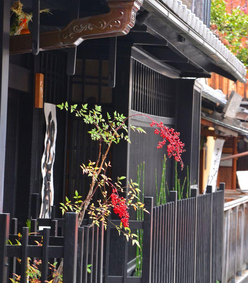 「祇園で最も絵になる」京都・新橋通…弁柄格子に古都の風情がたっぷり