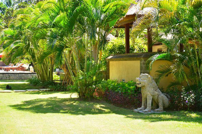 バリ島の戸建てに暮らす感覚のコテージ