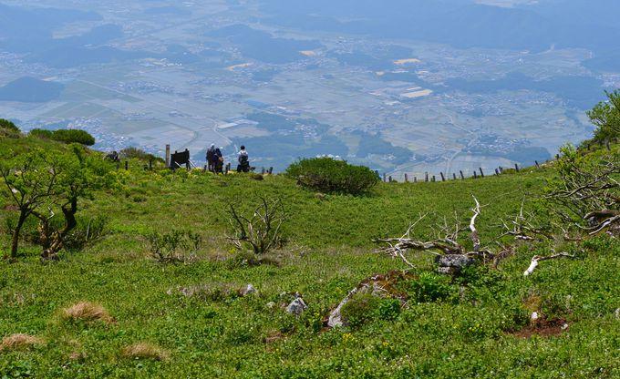 眼下に広がる、琵琶湖国定公園の景色