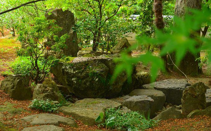 京都御所のそば、日本最古の法堂を持つ相国寺