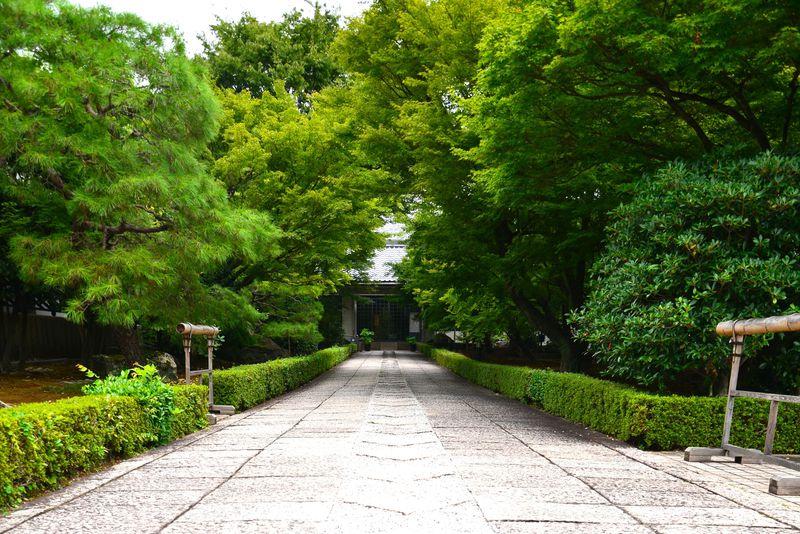 京都・相国寺で守る金閣、銀閣の宝…伊藤若冲の世界へようこそ!
