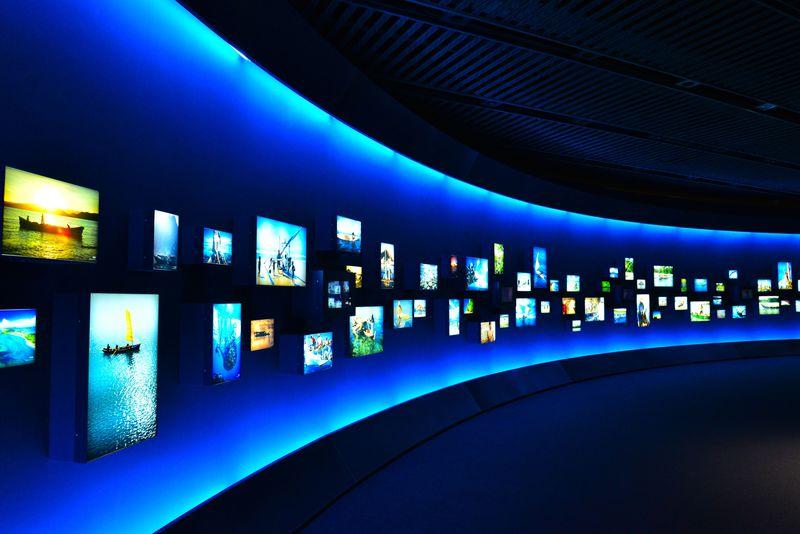 圧巻の展示!沖縄海洋博公園「海洋文化館」で『モアナと伝説の海』の世界へ