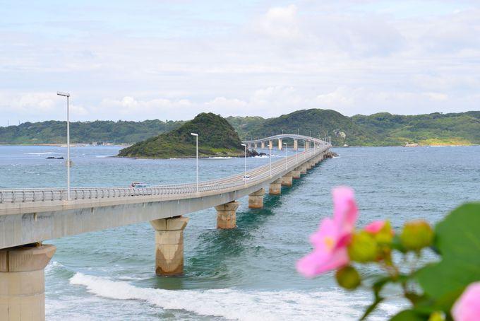 一望の青い世界に浸る…山口県 角島大橋&角島灯台へ