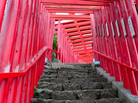紅の世界でパワーを充電!山口県「元乃隅稲成神社」で願望成就
