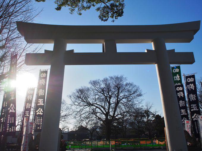 「加藤清正神社」は立ち入り可能!神社からの熊本城が美しい!