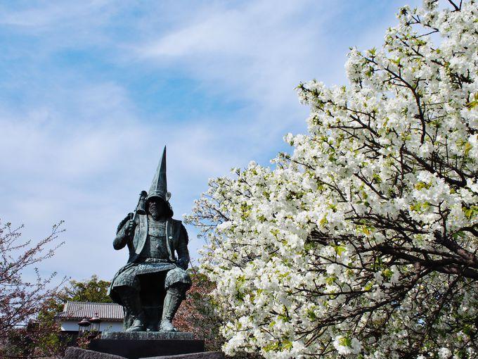 熊本地震の後も変わらず見守る清正公、花の季節が到来!