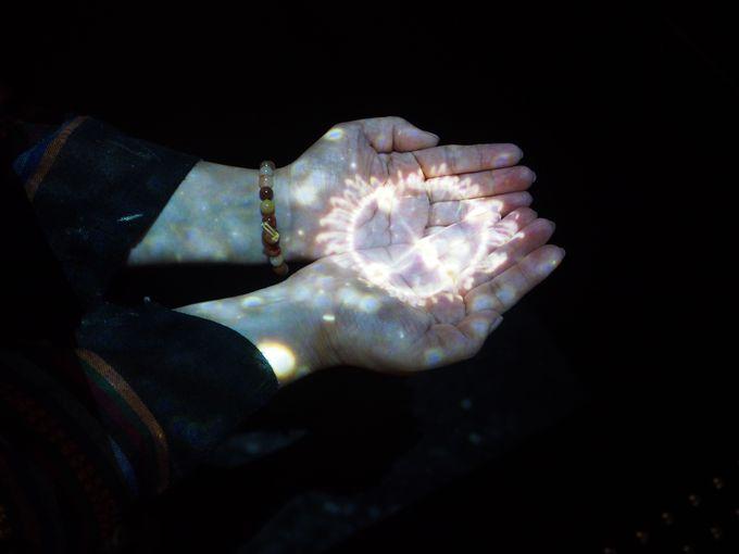 クラゲを手にのせる!おもしろいトリックにわくわく。