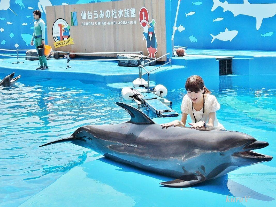 イルカにさわって写真をとろう!「仙台うみの杜水族館」
