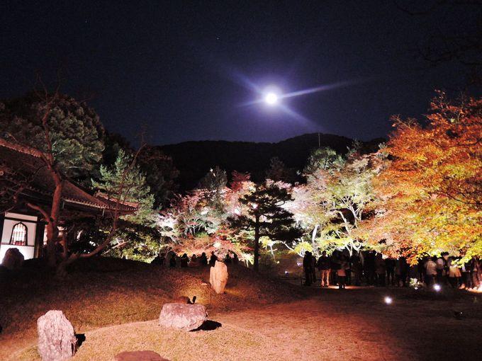 桃山時代の庭園は月と一緒に!