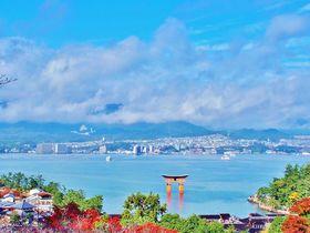 厳島神社や大鳥居が眼下に!宮島、絶景の穴場「平松茶屋」|広島県|トラベルjp<たびねす>