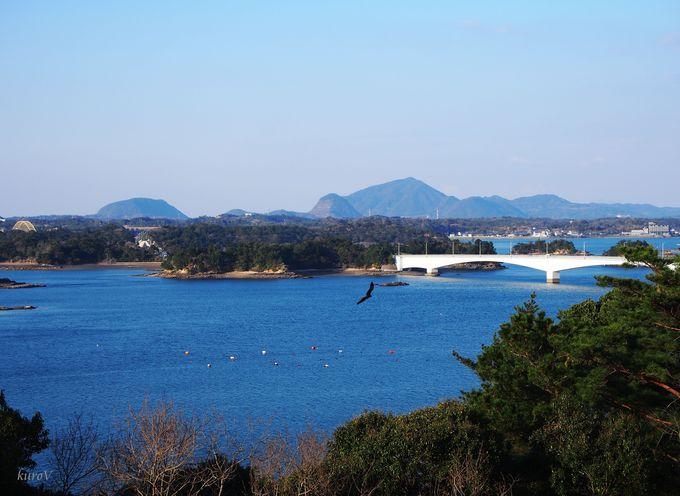 上から見下ろす松島と橋。5号橋側の丘「松島展望所」