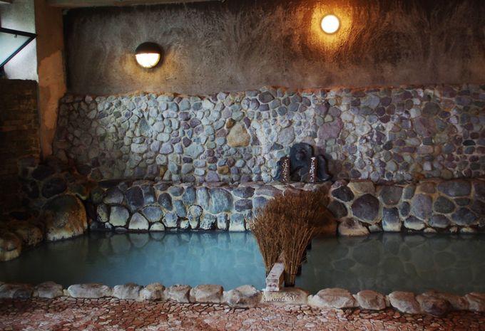 白濁の硫黄泉と単純泉で大地のパワーを!