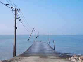有明海に沈む…道?干潟のおこしき海岸そば「長部田海床路」