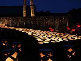 秋夜の城下町に広がる幻想風景!大分「うすき竹宵」で竹灯篭の贅沢散歩|大分県|トラベルjp<たびねす>