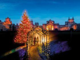 イギリス「ブレナム宮殿」で英国一のクリスマスイルミネーションを満喫!