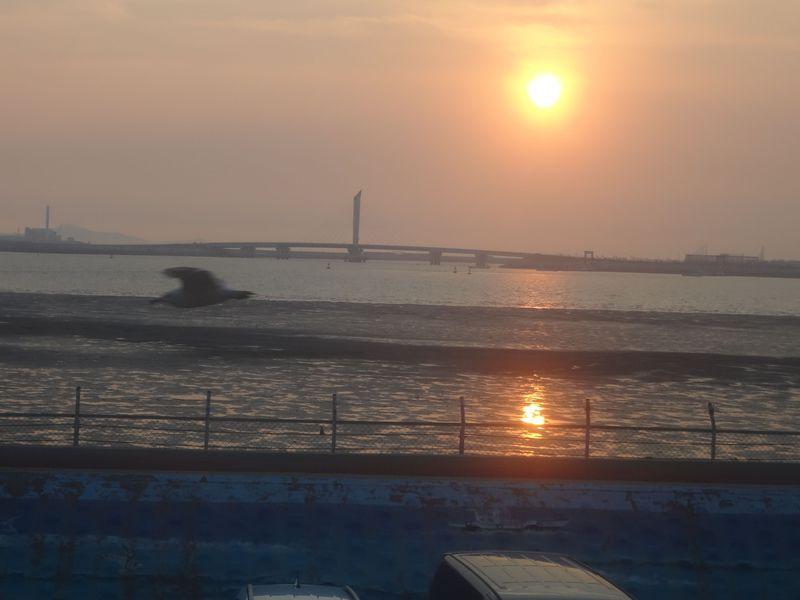 ソウルから日帰りOK!烏耳島は美しい夕陽と海鮮グルメ街