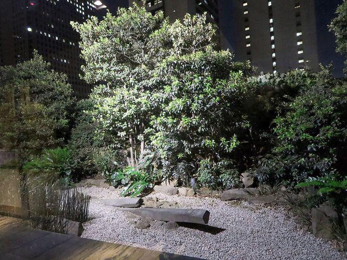 枯山水の庭と高層ビルの景色