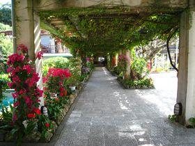 癒しのリゾート!沖縄「JALプライベートリゾートオクマ」