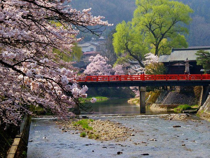 一之宮町周辺に桜の名所を訪ねる旅