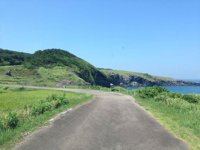日本のようで日本じゃない、不思議な島