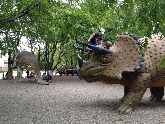 約40ヘクタールの広大な敷地に動物園や遊園地も!