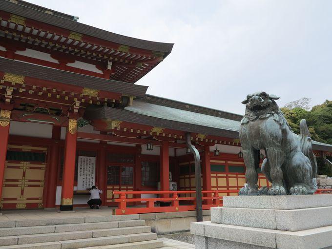 浜松は徳川家康のお膝元!「家康の散歩道」で家康の足跡を辿る