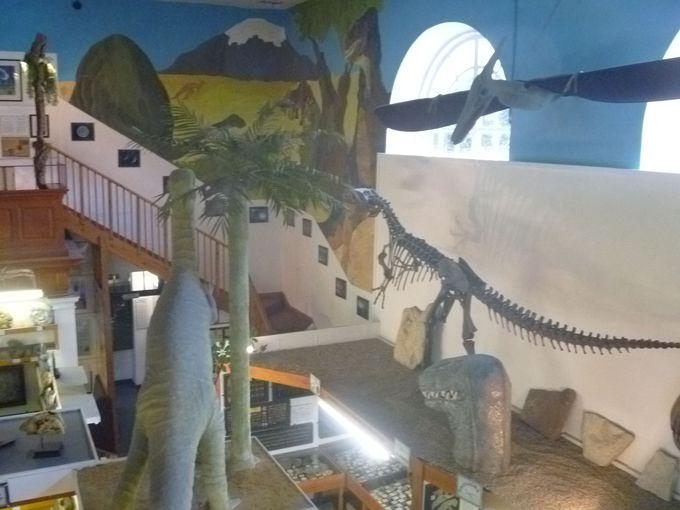 迫力満点!博物館で恐竜時代へタイムスリップ